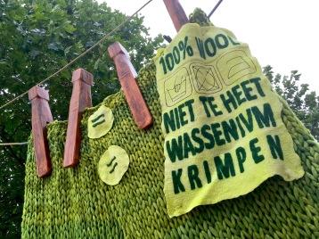 Onthulling 11 juli Groene Onderbroek (1)